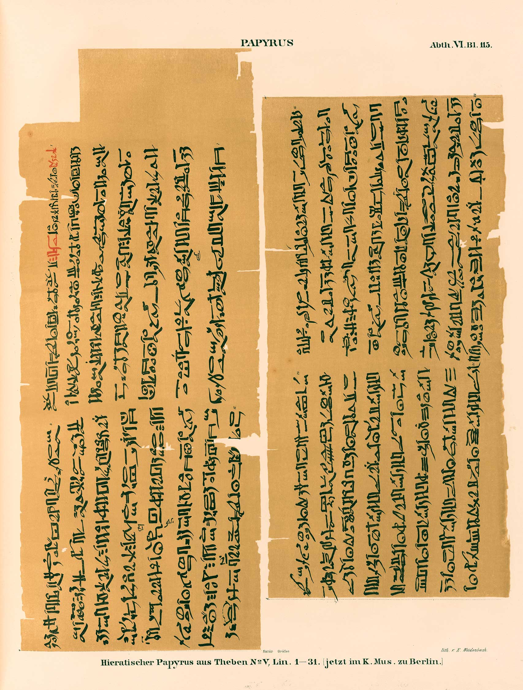 the pyramid texts in translation and commentary pdf